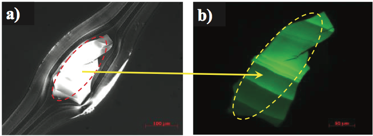 spectrographic analysis of multilayer films